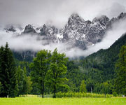 Высотная поясность в горах